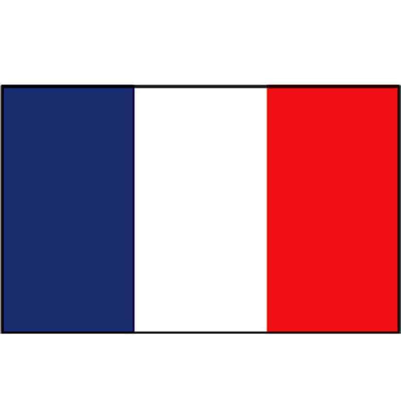 gastenvlag frankrijk franse gastenvlag