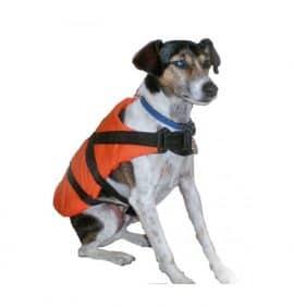 reddingsvest zwemvest hond
