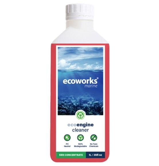 Ecoworks Motor Reiniger